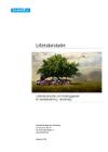 forside til publikation 'litteraturstudie om forebyggelse af radikalisering i skoleregi'