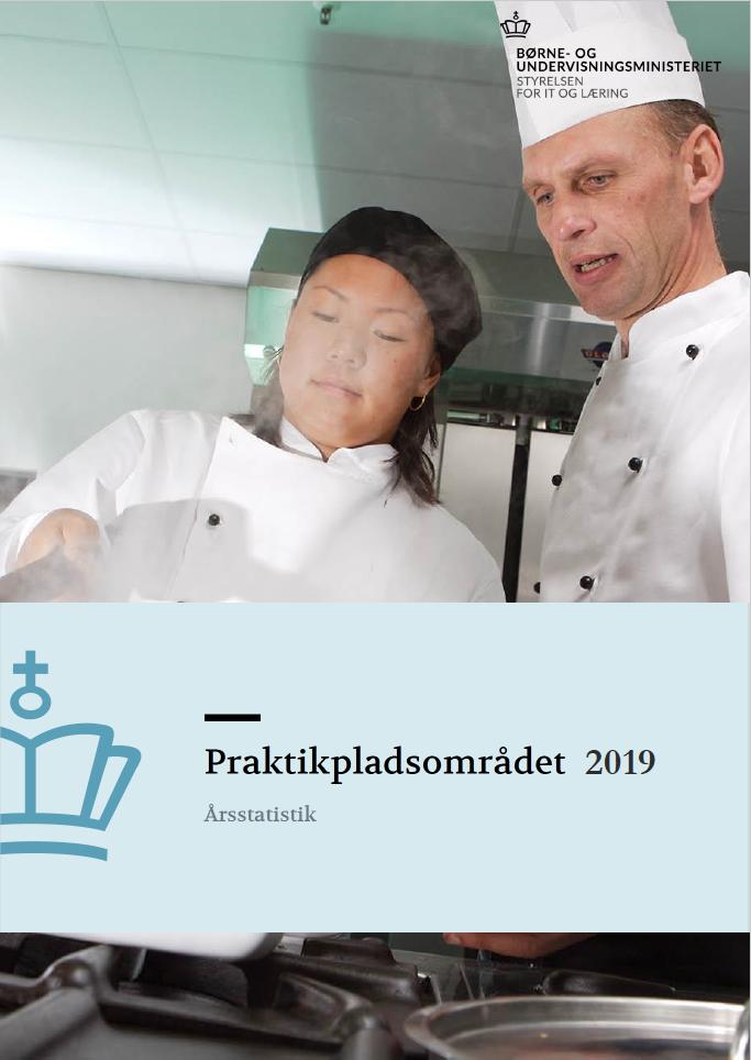 forside til publikationen Praktikpladsområdet 2019