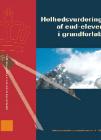 Forside til publikation 'helhedsvurdering af eudelever i grundforløb'